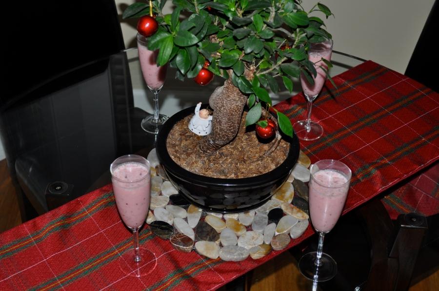 cranberry breakfast smoothie