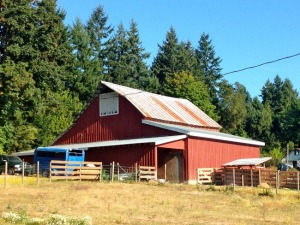 Steld Farm